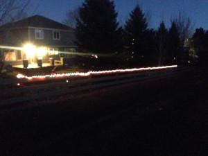 Dec 2013 Christmas Lights Back